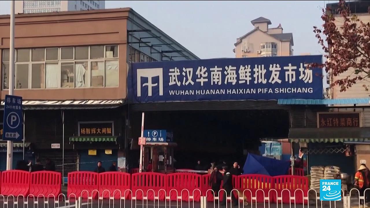 Coronavirus pandemic: WHO virus probe begins with fieldwork in ground-zero Wuhan