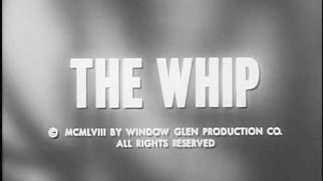 THE RESTLESS GUN - THE WHIP
