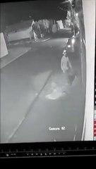 Fugitivo usa técnica do GTA para escapar a perseguição policial