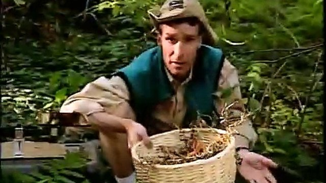 Bill Nye the Science Guy - S01E13 Garbage