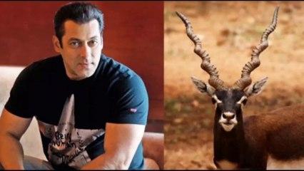 Bollywood news    bollywood news today    latest bollywood news     Mohanlal Drishyam 2 Salman Khan sushmita Sen the family man 2