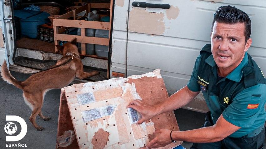 Can detecta algo sospechoso en este automóvil   Control de Fronteras España   Discovery En Español