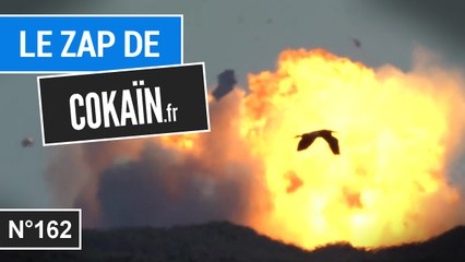 Le Zap de Cokaïn.fr n°162