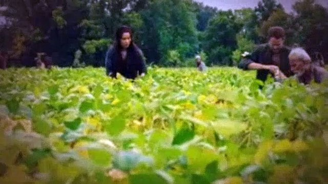 Killjoys Season 1 Episode 3 The Harvest
