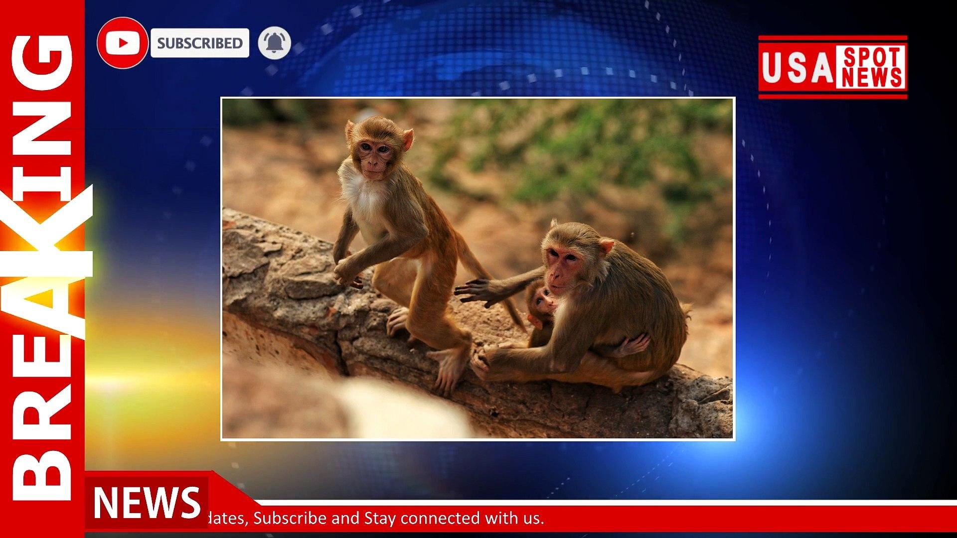 15 Feb 2021 | Morning News Headlines | Breaking News | News Today | USA Spot News
