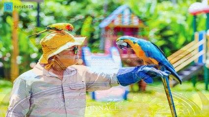 Review Pinnacle Grand Jomtien Resort and Beach Club