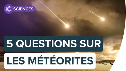 Qu'est-ce qu'une météorite ?   Futura