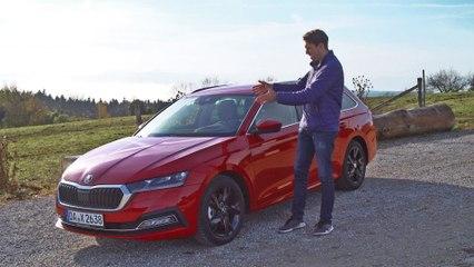 Skoda Octavia Combi (2020) ab 22.000€ | Das Platz-Wunder in der Golf-Klasse? | Motorvision