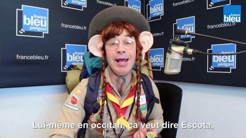 Escota - scout (Oc Express)