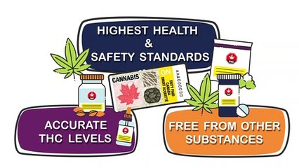 Are your cannabis products legal?