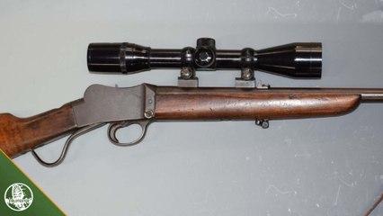 BSA .22 at auction