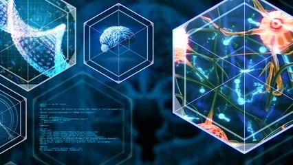 A DONDE VAMOS - Cerebro y Mente