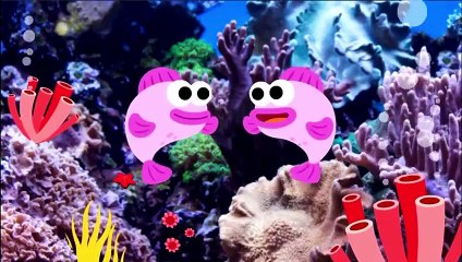 Baby Shark Dance- Pinkfong Sing & Dance - Animal Songs -Different Version