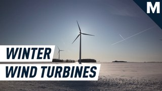 Yes, wind turbines can totally thrive in the cold. Including Antarctica.