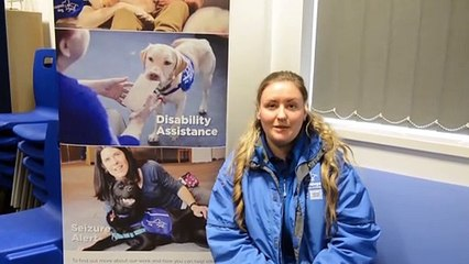 Sheffield Support Dogs. Trainer Danielle Kennedy with trainee support dog Bess.