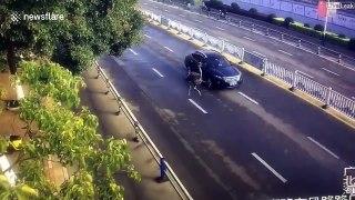 Une autruche aperçu sur l'autoroute, puis dans un quartier...