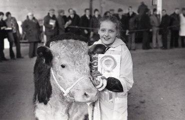 Friesian bull takes top price at RUAS Spring Show at Balmoral (1982)