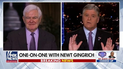 Gingrich on Capitol fence I'm worried by the steady drift to 'totalitarianism'