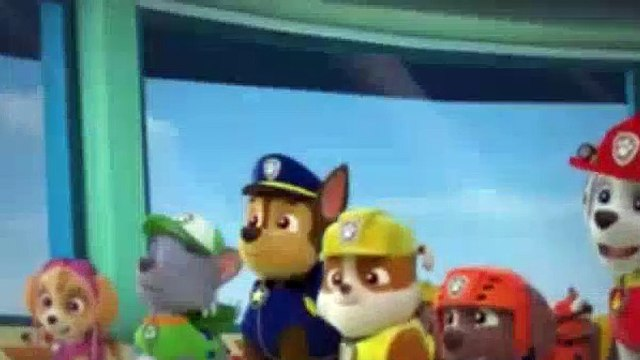 Paw Patrol Season 1 Episode 9,10 Pup Pup Goose Pup Pup And Away