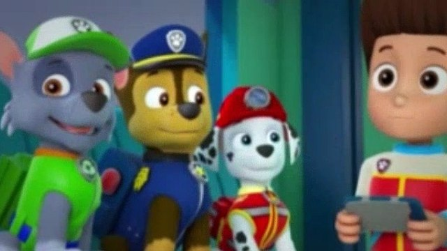 Paw Patrol Season 2 Episode 14 The New Pup