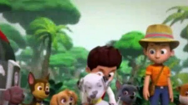 Paw Patrol Season 2 Episode 15 Pups Jungle Trouble