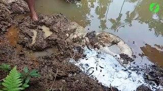 Ce pecheur sort quelque chose d'incroyable de la boue