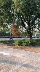 ฟอร์จูนเนอร์ดำซิ่งสวนเลน บีบเเตรไล่ทุกคันที่ขวางหน้า ใครไม่หลบมีชน