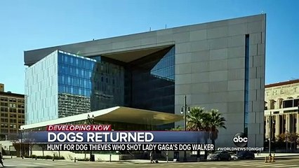 Lady Gaga's dogs safely returned