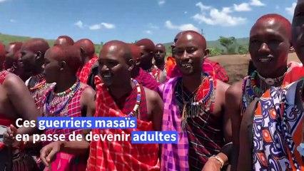 Kenya: des centaines d'hommes masaï participent à un rite de passage pour devenir adulte