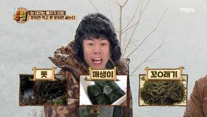 소떡소떡을 걸고 패자 부활전! (No) 브레인 서바이벌의 최종 우승자는?!