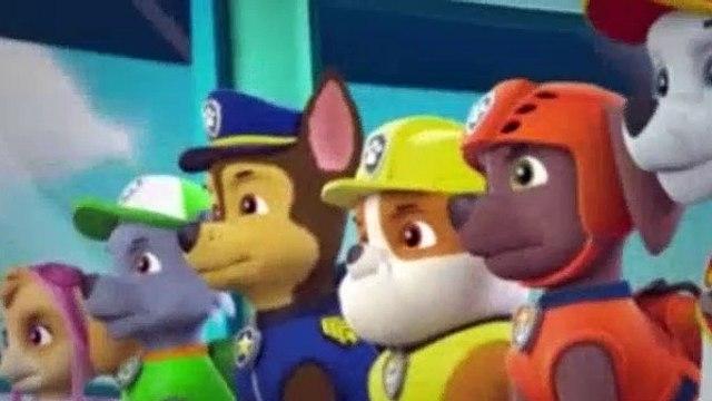 Paw Patrol Season 5 Episode 1 Pups Save The Kitty Rescue Crew