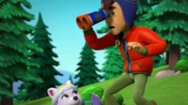 Paw Patrol Season 5 Episode 8 Pups Go For The Gold