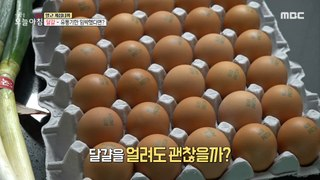 [LIVING] You eat long enough just to change the location? How to store eggs!, 생방송 오늘 아침 210304