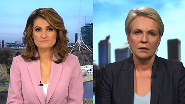 Labor criticises PM for ruling out inquiry into case