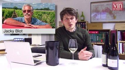 À Montlouis-sur-Loire, une nouvelle génération de vignerons à la hauteur