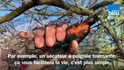 Roland Motte, jardinier : tailler son pommier