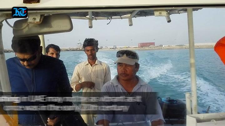 UAE's only shrimp farm