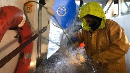 En pêche avec le fileyeur Izel Vor II, de Lorient