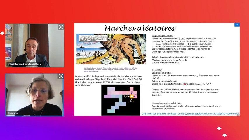 Conférence 5 : Marches aléatoires, une façon ludique d'aborder les probabilités, Laure Saint-Raymond