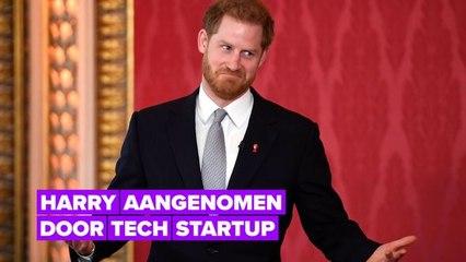 Alles wat we weten over Harry's eerste baan in het bedrijfsleven