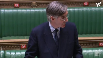 Jacob Rees-Mogg rules out tougher sentences for dog thieves