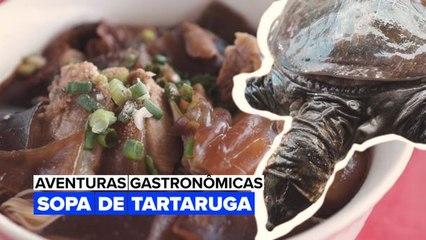 Aventuras Gastronômicas: Sopa de tartaruga