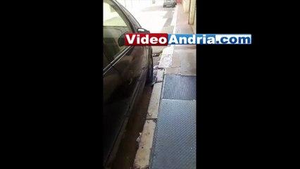 Andria: sulle tracce di colui che abbandona abitualmente le feci canine in via Pisani - Video