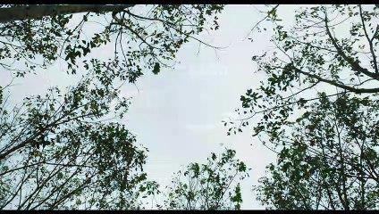 Joji - Official Teaser _ Fahadh Faasil, Baburaj, Shammi Thilakan _ Amazon Original Movie _ April 7 ( 1080 X 1920 )