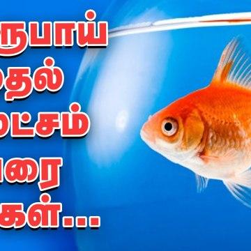 5 ரூபாயில் மீன்கள்...  கொளத்தூர் மீன் மார்க்கெட் விசிட்.. Biggest fish market