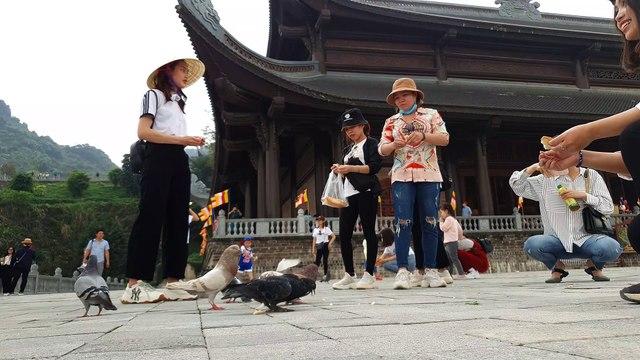 Family Team   Chùa Tam Chúc #12