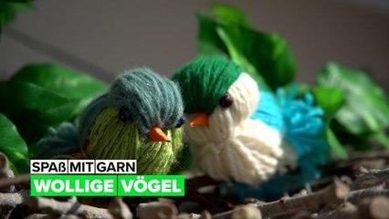 Spaß mit Garn: Vögel aus Wolle