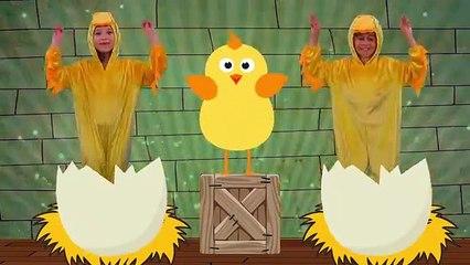 Chicken Dance - Children Dance Song