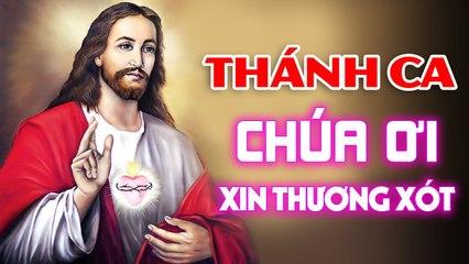 CHÚA ƠI XIN THƯƠNG XÓT - Nhạc Thánh Ca Hay Nhất Lòng Thương Xót Chúa