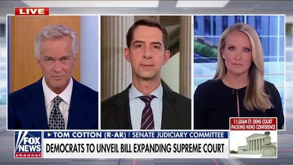 Cotton Supreme Court will lose 'all legitimacy' if court-packing passes